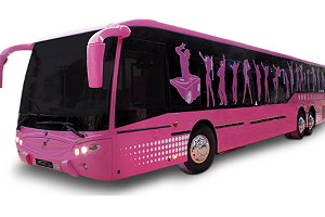 Party Bus, Alicante